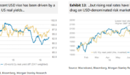 USD Looking South; The Pain Trade Has Started – Morgan Stanley