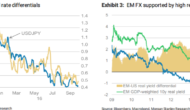 USD To Fall Another 3-4% From Current Levels – Morgan Stanley